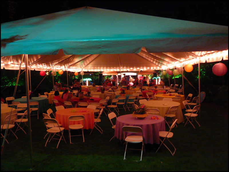 Wedding Tent Lighting Ideas Wedding String Lights