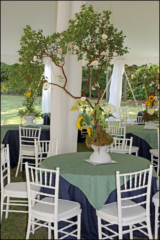 White Chiavari Chair Rental