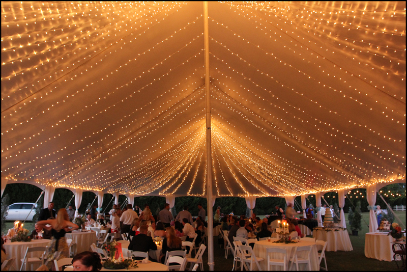 Father of the Bride Wedding Tent Lights