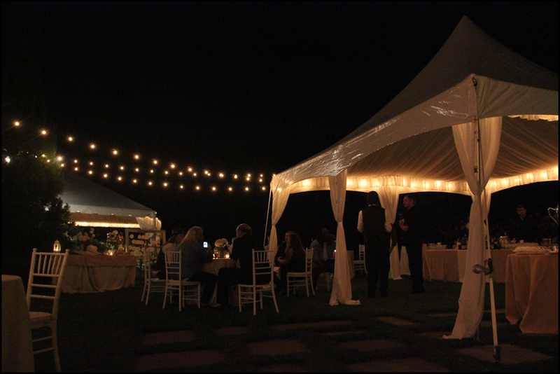Wedding String Lighting Lights