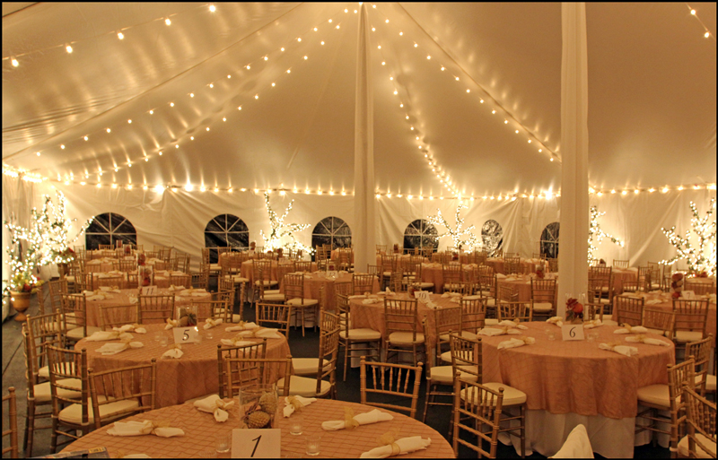 Bistro Lighting in Tent