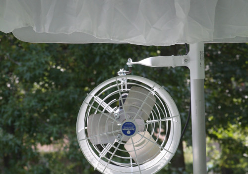 Athens Lake Oconee Wedding Fan Rental