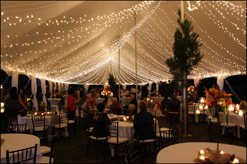 Father of the Bride Tent Lights & Georgia Wedding Tent Rental - Lighting Atlanta Chiavari Chair ...