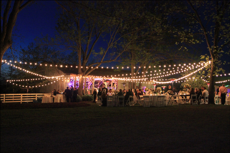 String Lights | Cafe Lighting | Bistro | Goodwin Events