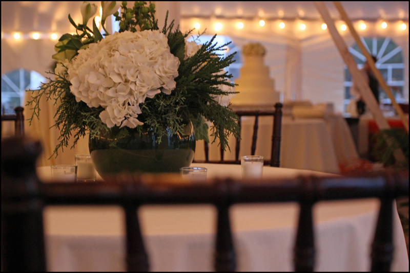 Wedding Venues In Athens Ga Pinterest