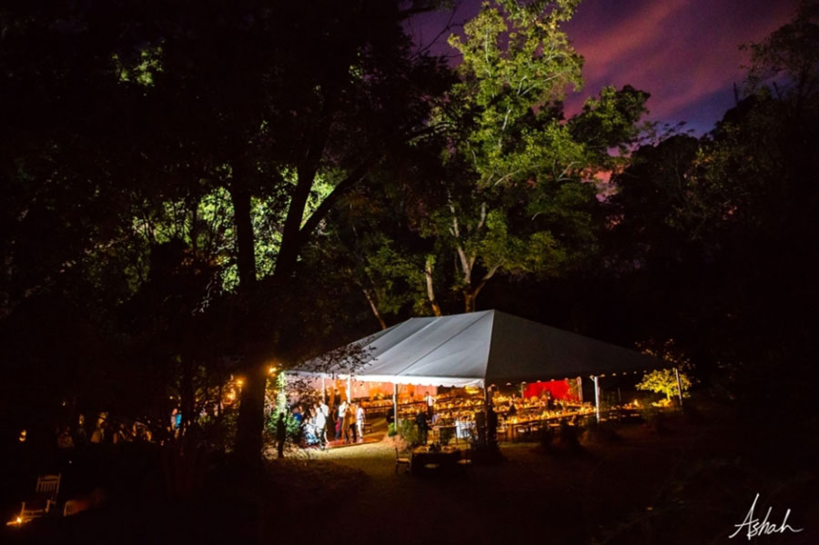 Backyard-Tent-Wedding