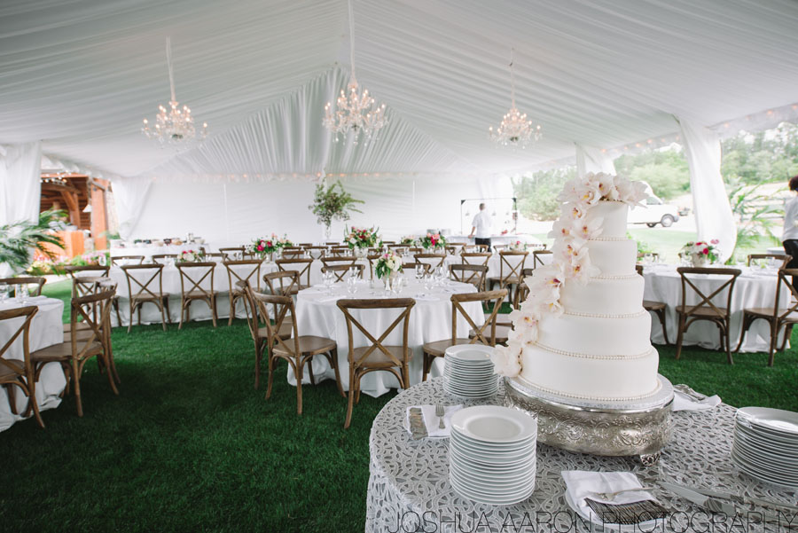 gorgeous wedding cake in tent